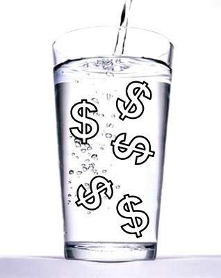 El agua como objeto económico