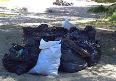 ...más de siete toneladas de residuos se extrajeron de la ribera del río alberche.