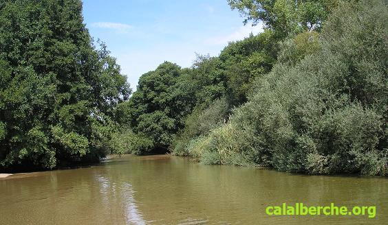 -río Alberche a su paso por Calalberche. Foto Jomoga